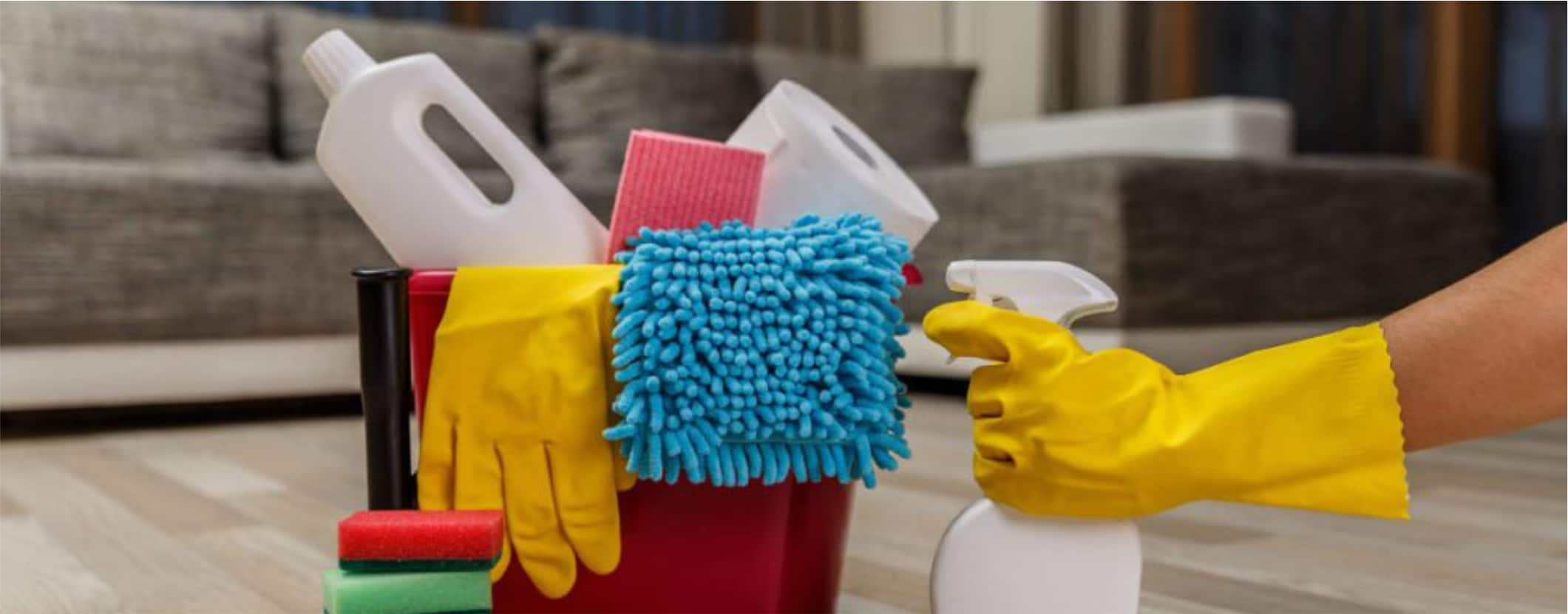 SPOTLESSLY CLEAN HOUSE CLEANING & JANITORIAL SERVICES,